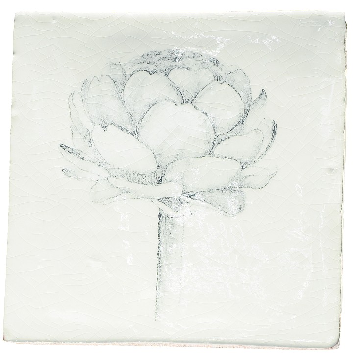 Botanical Etchings 7
