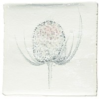 Botanical Etchings 10