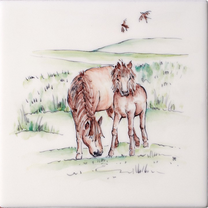 Ponies 2 by Marlborough Tiles