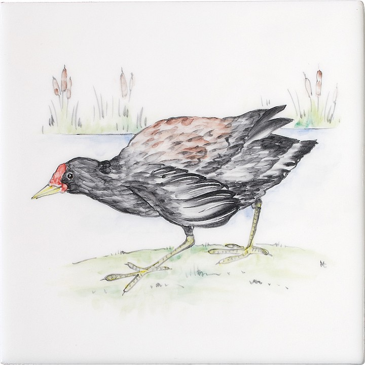 Moorhen 5 by Marlborough Tiles