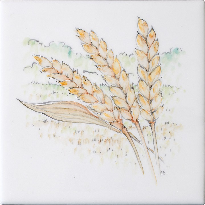 Wheat Ears 6