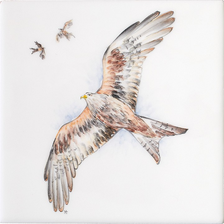 Red Kite 11 by Marlborough Tiles