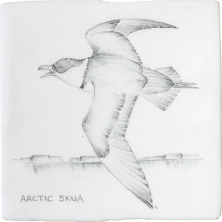Artic Skua 8 by Marlborough Tiles