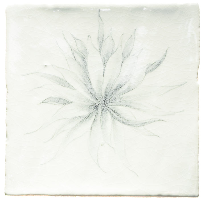 Botanical Etchings 3
